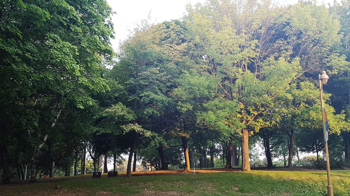 Le Parc Jean Drapeau